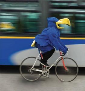 the university thunderbirds mascot bikes to work... do you?
